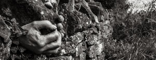 Jo Webb – Dry Stone Waller